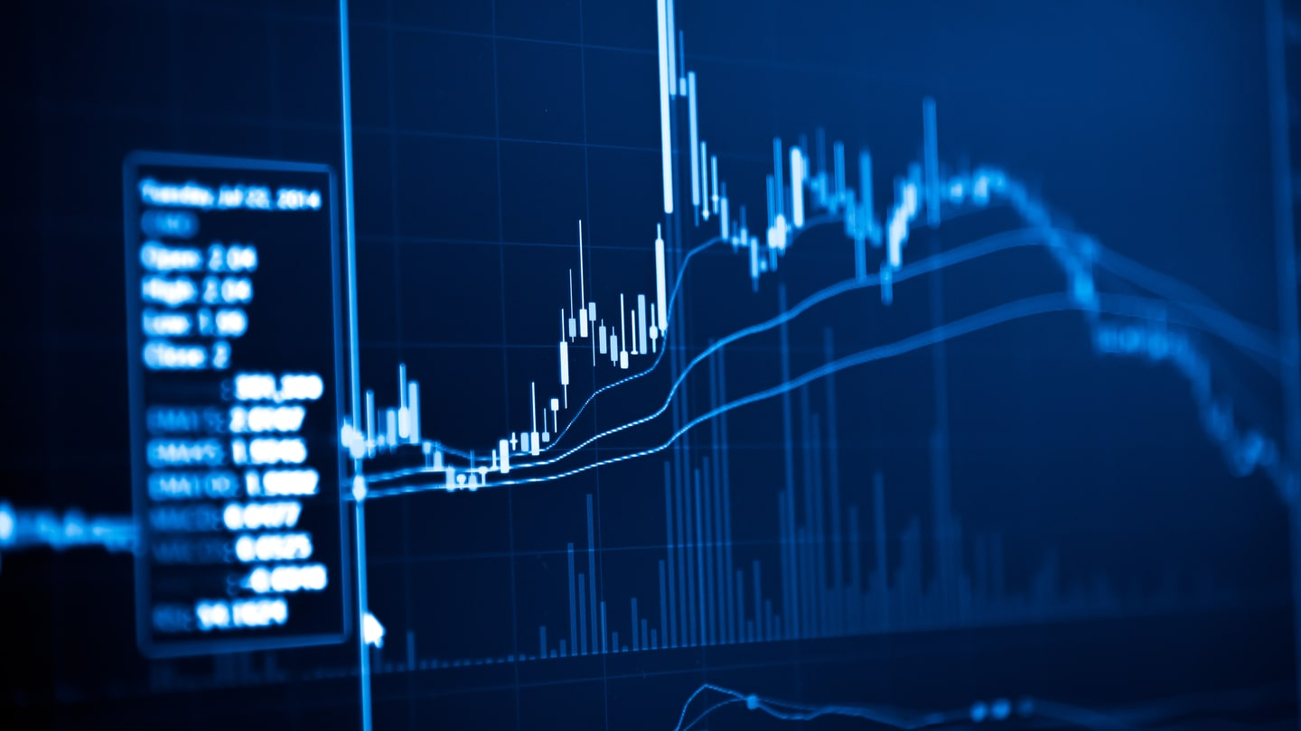 The best forex signal service